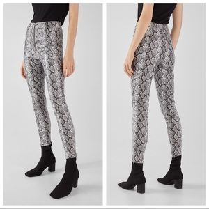 NWT. Bershka Sneakskin print leggings. Size S.